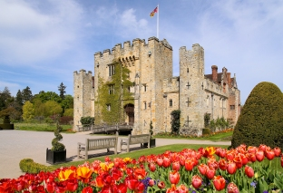 Tulips in front of the Castle