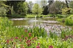 Myddleton House Gardens