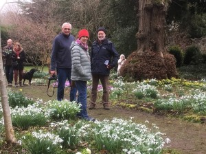 Robin Bletsoe, Jo Dyke and Gareth Stanfield enjoying the Snowdrops and head for tea!