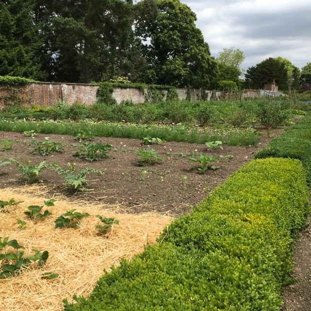 The Walled Garden at Down House